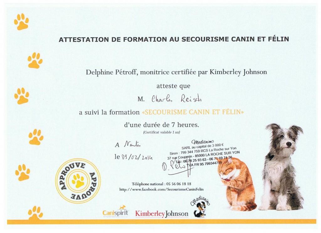 diplôme secouriste canin felin